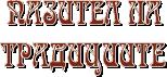 Logo_Pazitel2